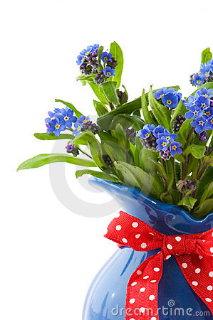Free Forget-me-not Stock Images - 13983124