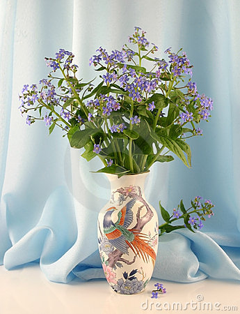 Forget-me-nots in a vase
