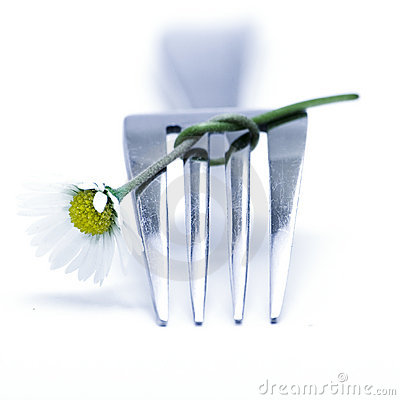 Free Fork And Flower Royalty Free Stock Photos - 1049148