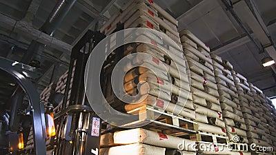 Forklift podejść towary Rozładowywają zafrachtowania na barłogu zbiory