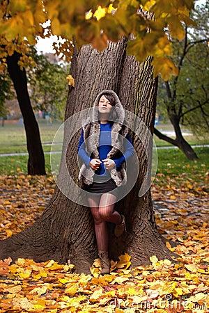 Forma do outono