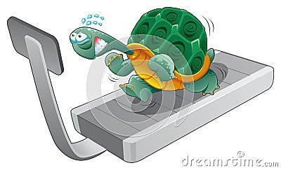 Forma fisica della tartaruga