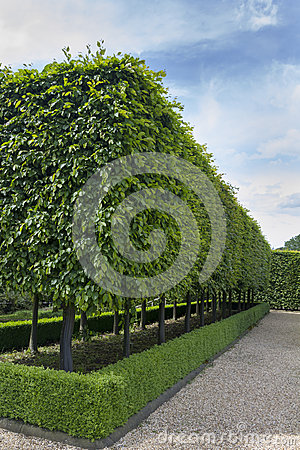 Free Formal Gardens Stock Images - 41731804