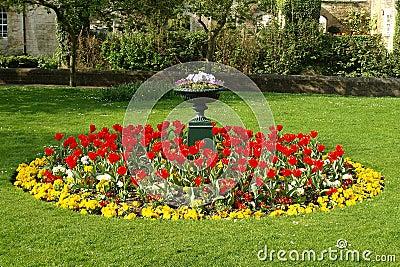 Formell trädgård för underlagblomma