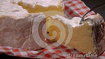 A forquilha toma um setor do queijo redondo do camembert vídeos de arquivo