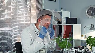 Forskare som observerar växten under förstoringsglas och efter att ha uppmärksammat kollegans experiment arkivfilmer