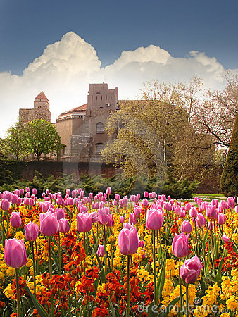 Fortress and Tulips