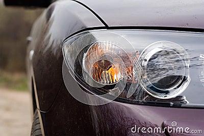 Forward headlight of the car