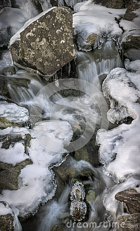 Fossils in a Frozen Waterfall