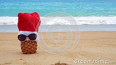 Foto dell'ananas con vetro solare e cappello di Babbo Natale sulla spiaggia tropicale Nuovo anno e concetto di Natale Happy New Y stock footage