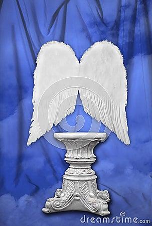 Fotografía del estudio fijada con las alas angelicales
