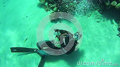 Fotografia do mergulhador de mergulhador subaquática Mar Vermelho, Egipto filme