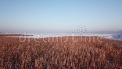 fotografia 4k aérea Paisagem do inverno com uma vista do rio congelado shrubs Luz morna do por do sol filme