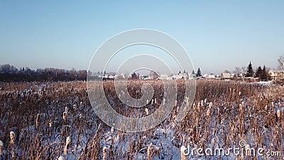 fotografia 4k aérea Paisagem do inverno com uma vista do rio congelado shrubs Luz morna do por do sol video estoque