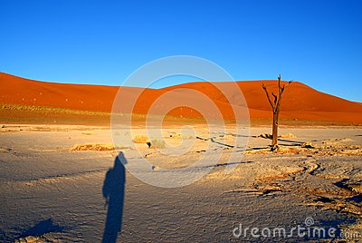 Fotographers shadow