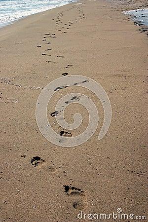 Fotspårsands