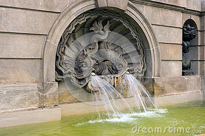 Fountain fish carp