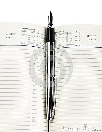 Fountain pen on diary