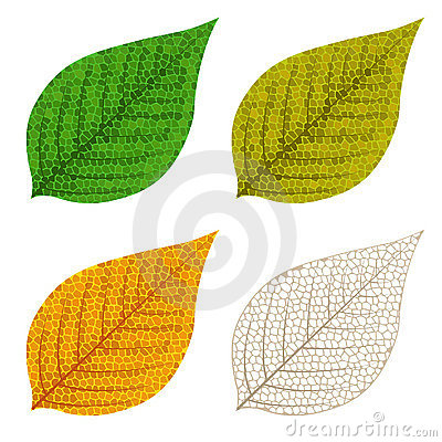 Four autumn mosaic leaves