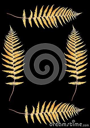 Four Autumnal Ferns