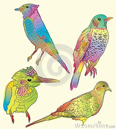 Four beautiful birds