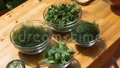 Four Bowls of Herb Leaves. Steady, medium close up shot of four glass bowls containing an array of herb leaves stock video