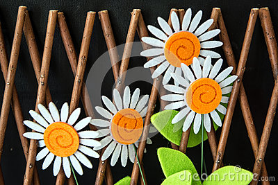 Four Daisy Flowers In Trellis Fence