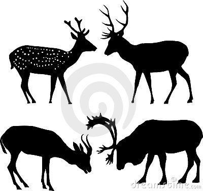 Four deer silhouettes