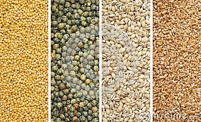 Four Dried Grains