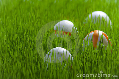 Four Easter eggs on green grass
