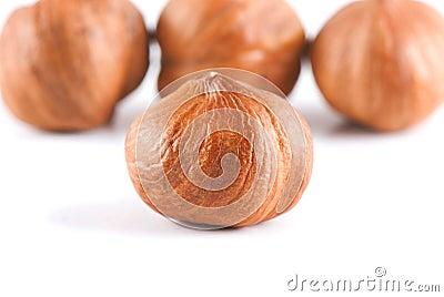 Four filbert nuts