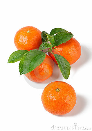 Free Four Fresh Tangerines With Leaves Royalty Free Stock Photo - 7791415
