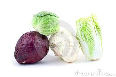 Four kinds of cabbage