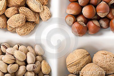 Four kinds of popular nuts