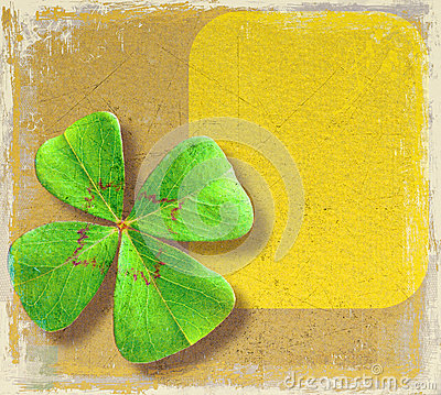 Four-leaf clover on paper
