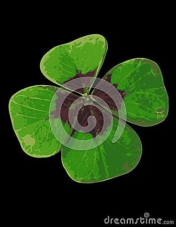 Four-leafed Clover 05