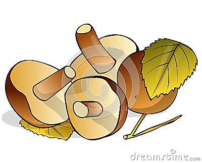 Four mushrooms