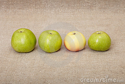 Four ripe apples against drapery