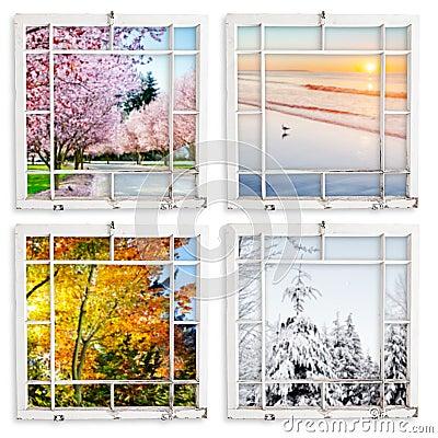 Four season views throgh grungy painted windows