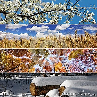 Free Four Seasons Stock Photography - 28804012