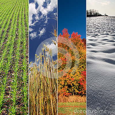 Free Four Seasons Royalty Free Stock Images - 28804149