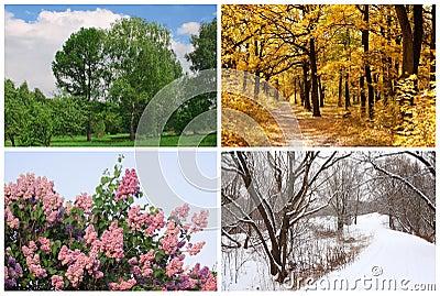 banshee all seasons free download