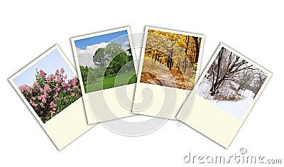 Four seasons spring, summer, autumn, winter photo