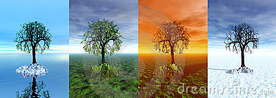 Four seasons. Tree, 3d graphic