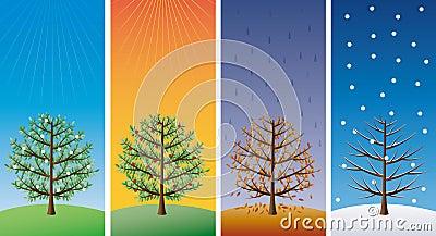 Four seasons - trees