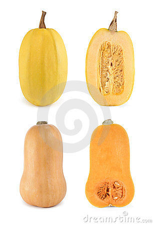 Free Four Shots Of Butternut And Spaghetti Squashes Stock Images - 14899764