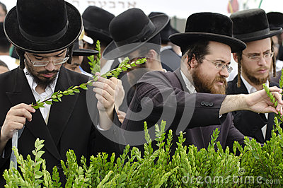 Four Species Market for Jewish Holiday of Sukkot Editorial Photo
