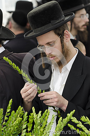 Four Species Market for Jewish Holiday of Sukkot Editorial Stock Image