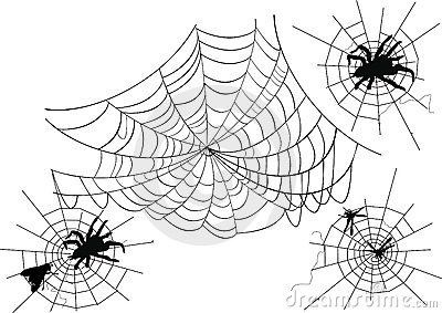 Four spider webs