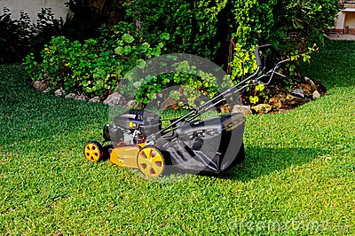 Four stroke petrol lawnmower.